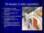 tb disease in elder population
