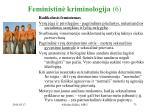 feministin kriminologija 6