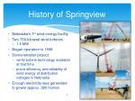 history of springview