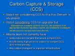 carbon capture storage ccs