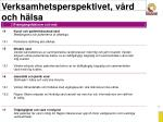 verksamhetsperspektivet v rd och h lsa33