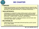 bic charter
