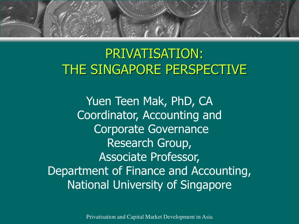 privatisation the singapore perspective l.