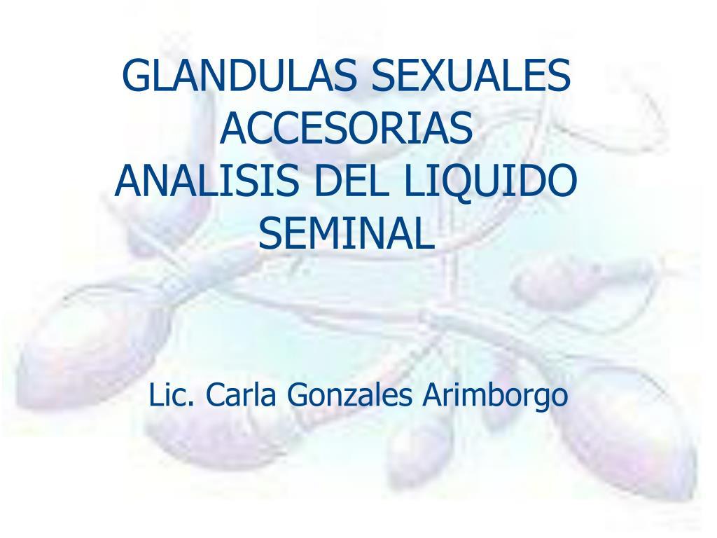 glandulas sexuales accesorias analisis del liquido seminal l.