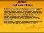 abstract the casimir force