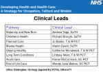 clinical leads