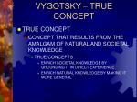 vygotsky true concept