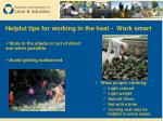 helpful tips for working in the heat work smart30