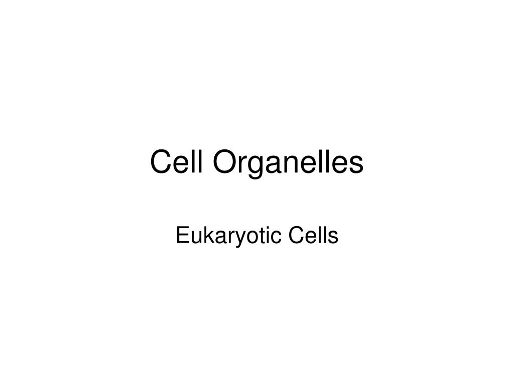 cell organelles l.