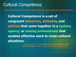 cultural competence14