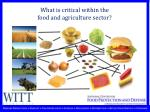 what is critical within the food and agriculture sector
