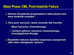 blast phase cml post imatinib failure