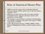 role of statistical master plan