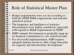 role of statistical master plan5
