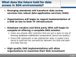 what does the future hold for data access in soa environments