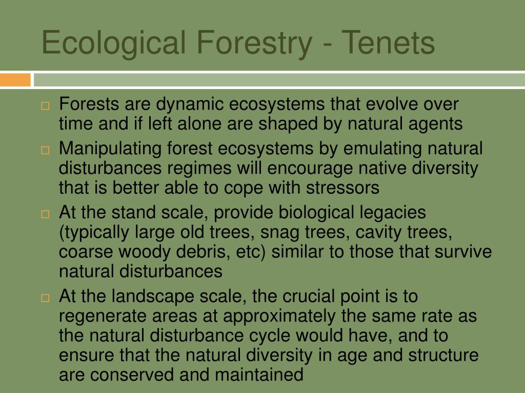 Ecological Forestry - Tenets