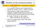 numbers as file naming convention
