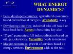 what energy dynamics