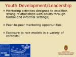 youth development leadership
