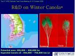 r d on winter canola