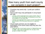 how many youth from each county can compete in each project