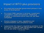 impact of wto plus provisions