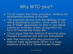 why wto plus