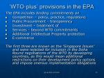wto plus provisions in the epa