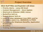 project overview11