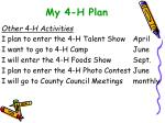 my 4 h plan19