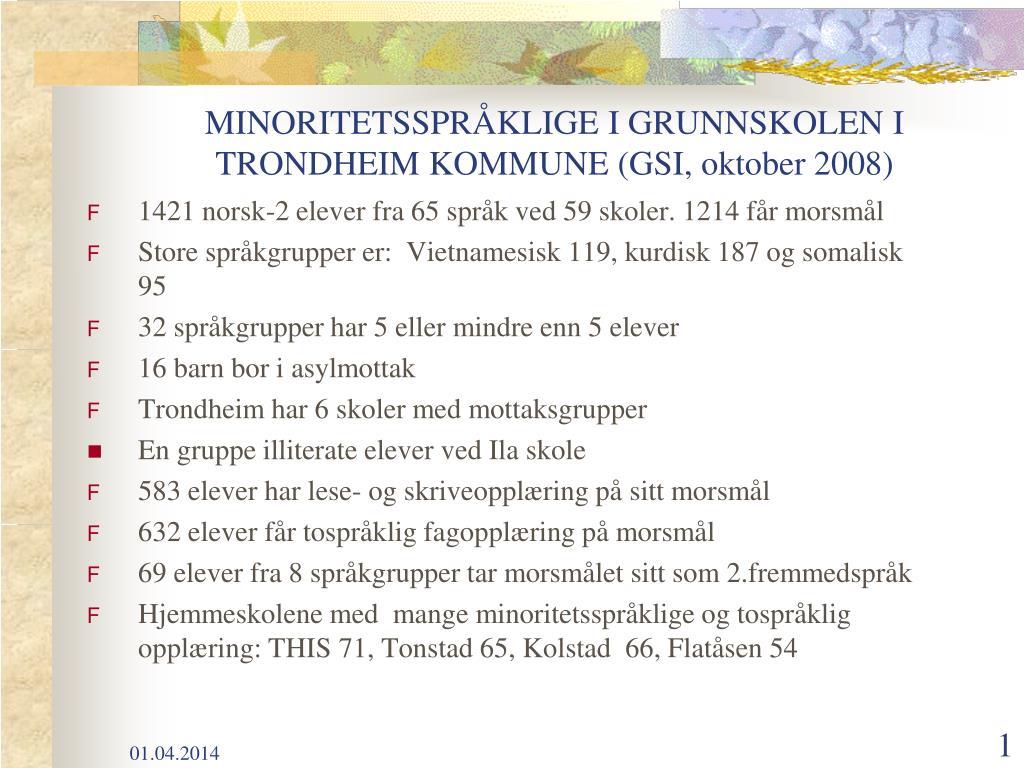 minoritetsspr klige i grunnskolen i trondheim kommune gsi oktober 2008 l.