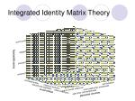 integrated identity matrix theory