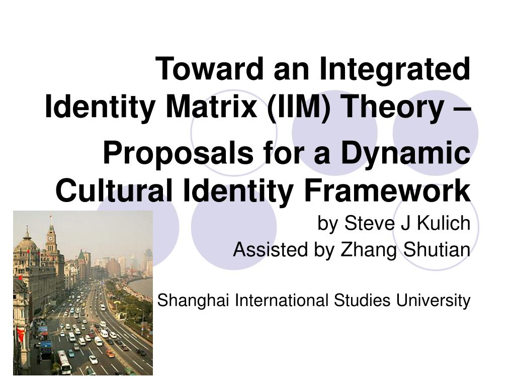 toward an integrated identity matrix iim theory proposals for a dynamic cultural identity framework l.