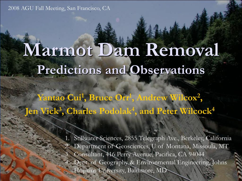 marmot dam removal predictions and observations l.