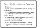 fuzzy shin inference services