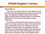 staar english i literary24