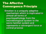 the affective convergence principle