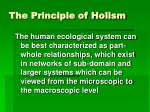the principle of holism