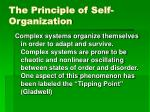 the principle of self organization
