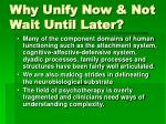 why unify now not wait until later