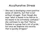 acculturative stress38