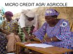 micro credit agr agricole