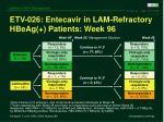 etv 026 entecavir in lam refractory hbeag patients week 96