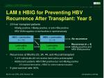 lam hbig for preventing hbv recurrence after transplant year 5