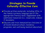 strategies to provide culturally effective care130