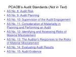 pcaob s audit standards not in text15