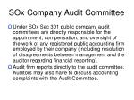 sox company audit committee