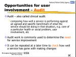 opportunities for user involvement audit