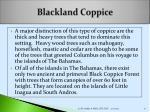 blackland coppice