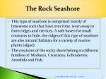 the rock seashore
